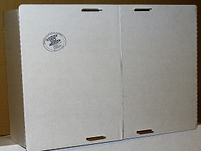 Kliņģera kaste